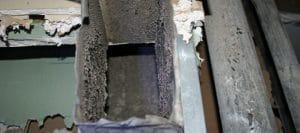 Hvac Mold Prevention